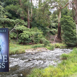 Review   Throne of Glass   Sarah J Maas