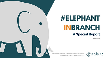 #ElephantinBranch_SpecialReport.png