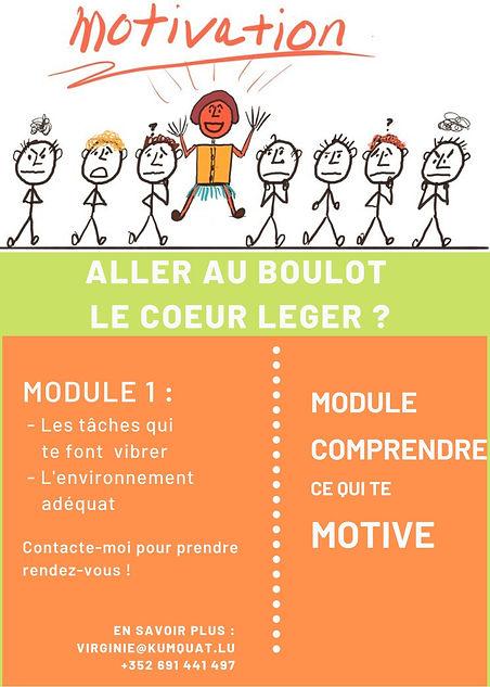 module motivation.jpg
