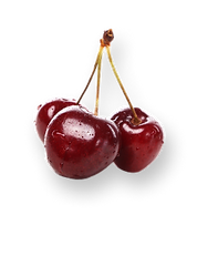 delicious-berries-on-the-table 1.png