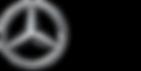 Mercedes_Brazil_250_125.png