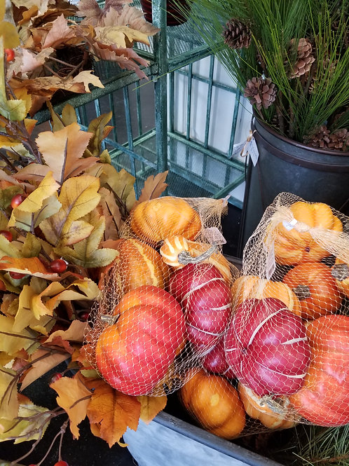 Bag of 6 Assorted Pumpkins and Gourds
