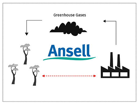Ansell website graphic.png