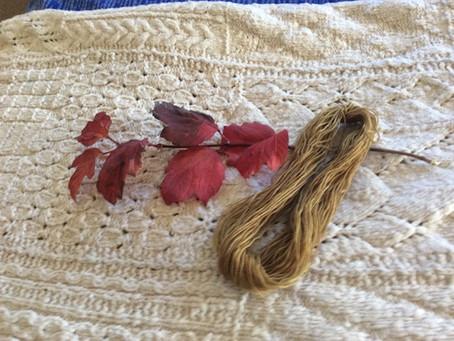 Virtual Dye Day - rose leaves