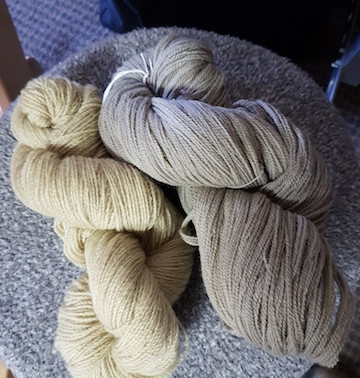 Virtual Dye Day - the story continues
