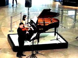 小提琴(或其他樂器)獨奏
