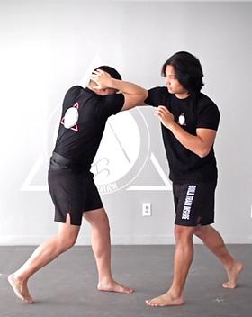 Filipino Martial Arts Online