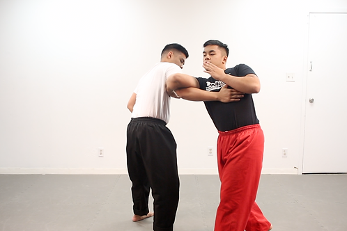 FMACONCEPTS CYCLE: LESSON 18 - ARMBARS