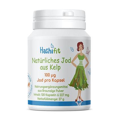 Hashifit natürliches Jod aus Bio Kelp feindosierbar 100µg je Mini Kapsel ideal bei Hashimoto EAN-4260563129150