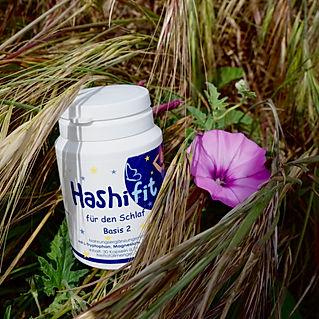 Hashifit basis 2 für die Nacht mit Melatonin hilft beim einschlafen natürliches Schlafmittel tryptophan Magnesium für das Nervensystem
