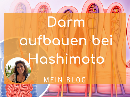 Darm aufbauen bei Hashimoto