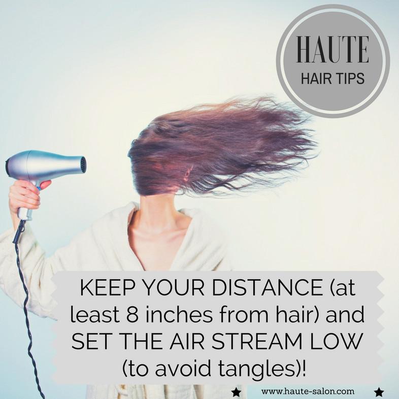 HAUTE Hair Tips: Drying 101
