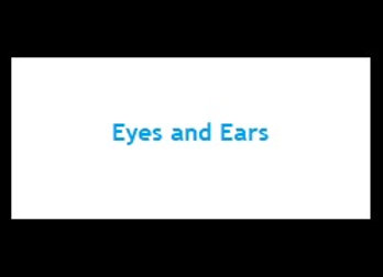 Primer - Eyes and Ears