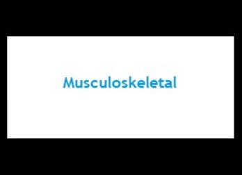 Primer - Musculoskeletal