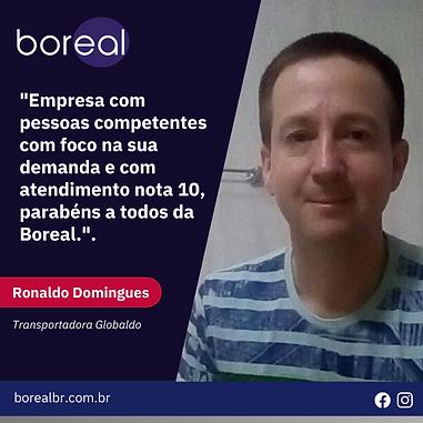 5 - Opinião Cliente Ronaldo.png