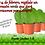 """Thumbnail: PLANTA CACTUS CORAZON (Hoya kerrii) en maceta de 4"""""""