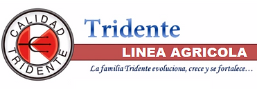 tridente AG.png