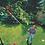 Thumbnail: MANGO TELESCOPICO MULTI STAR 4 MTS BY WOLF GARTEN