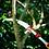 Thumbnail: SERROTE CURVO DE PODA PROFESIONAL, WOLF GARTDEN MOD SAW 370
