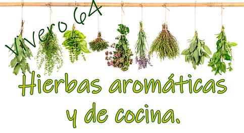 hierbas aromaticas cpj web.png