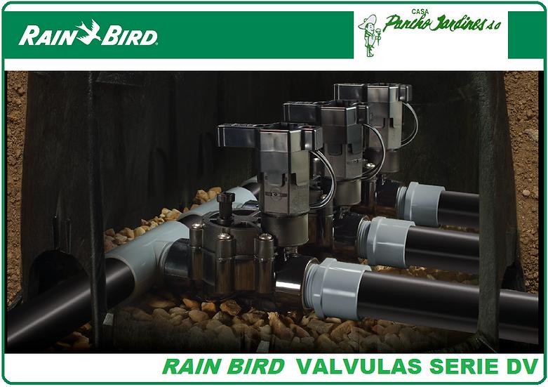 "VALVULA SOLENOIDE RAIN BIRD 1"" SERIE DV100 NPT 1"""