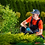 Thumbnail: PLANT CARE PLUS, BY ORTHO, INSECTICIDA PARA EXTERIORES LISTO PARA APLICAR, 700ml