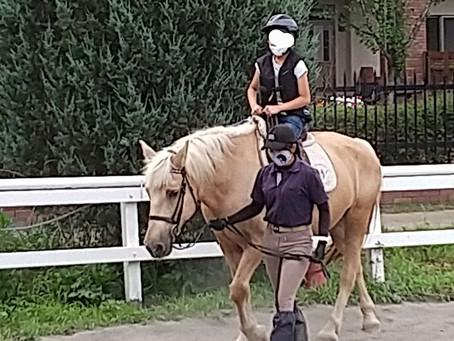 体験乗馬に行って来ました