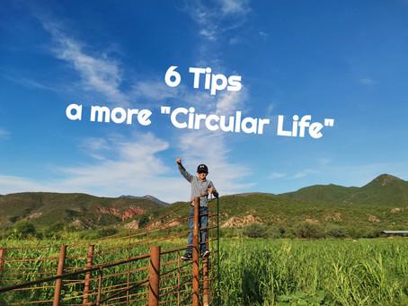 """Tips for a """"Circular"""" Life"""