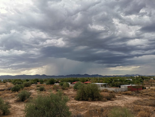 Cortina de lluvia en el desierto de Sonora.