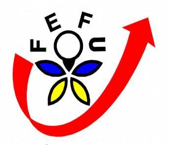 Fédération Echanges France Ukraine