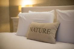 Photo de chambre Nature.jpg