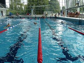 Piscine - Complexe sportif Poséidon woluwe Bruxelles