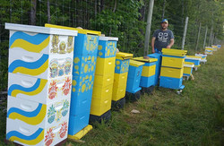 Our painted hives