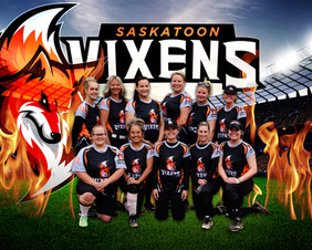 Vixens-Team-Photo-Photoshopped.jpg