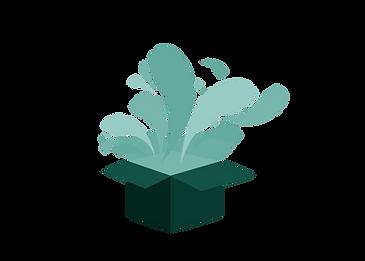 new giftbox - flat, green.png