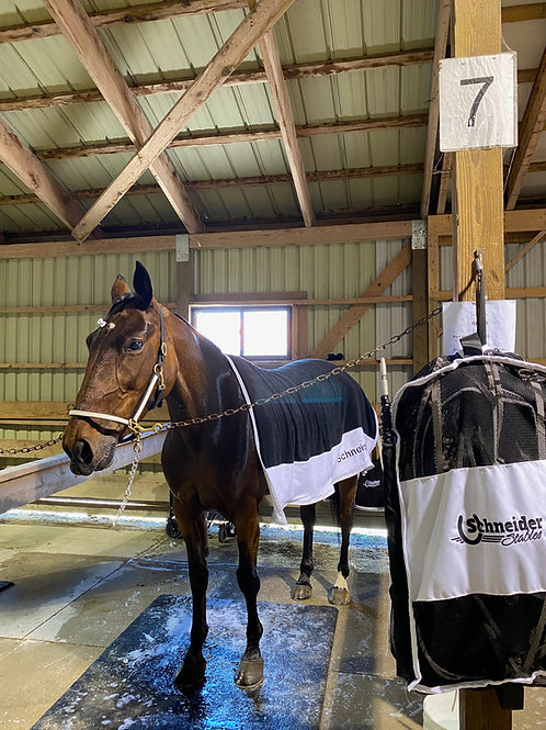 MareFlare Cooling Towel