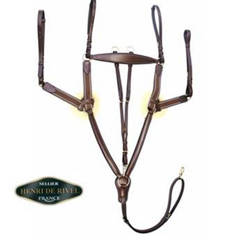 HDR 5-Point Elastic Breastplate Martingale w/ Running Martingale Attachment
