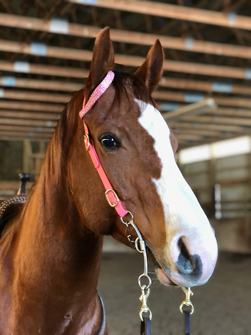 MareFlare GLITTER Beta One Ear Headstall