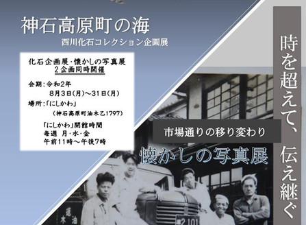 化石企画展・懐かしの写真展 2企画同時開催! 8月3日(月)~ 8月31日(月)