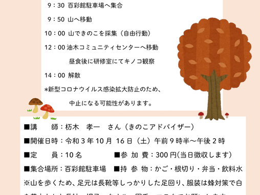 キノコ観察会  10月16日(土) 参加者募集中!
