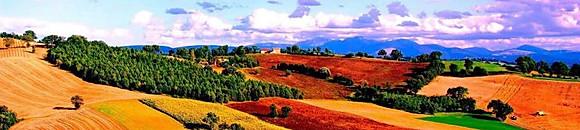 Borgo Paglianetto - I Bianchi