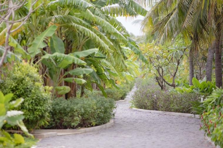 que-toi-village-beachfront-villas-walkwa