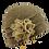Thumbnail: Ladies Pull on Winter Wool Hat BH5083