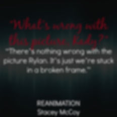 What's wrong with this picture Kady? There's nothing wrong with the picture Rylan. It's just we're stuck in a broken frame. Reanimation book teaser.