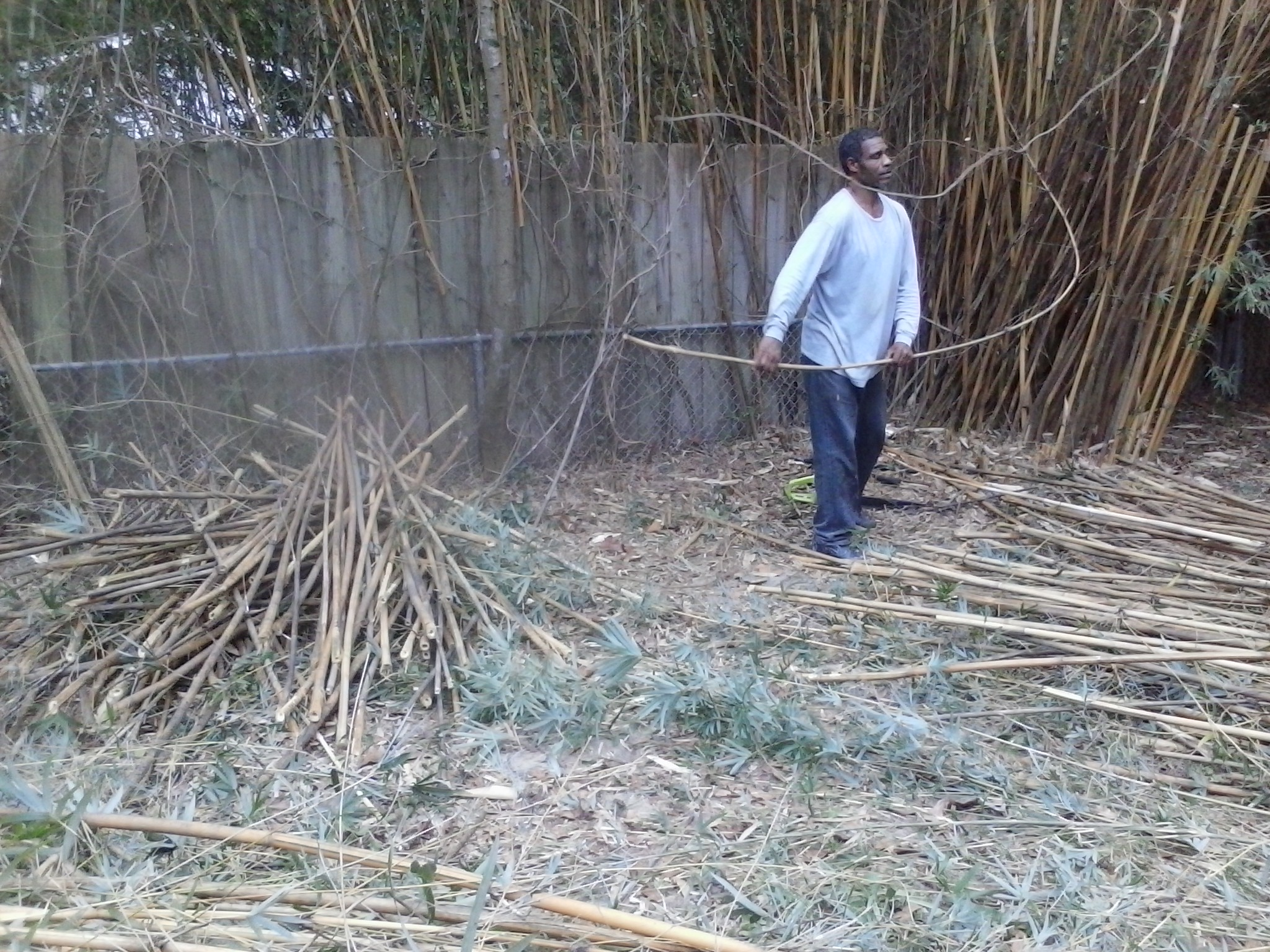 BAMBOO CUTTING
