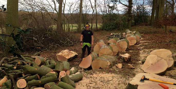 Green Eagle Tree Surgeons and Landscape Gardeners, Northumberland and Newcastle