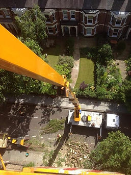 Green Eagle Tree Surgeons and Garden Landscapers