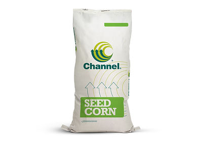 PetersonSeedWebPix_ChannelProducts.Corn.