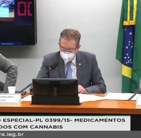 Relator dá parecer favorável ao cultivo da cannabis para fins medicinais e industriais