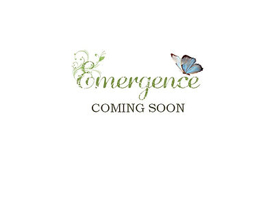 Emergence Book Cover Ideas PREVIEW.jpg